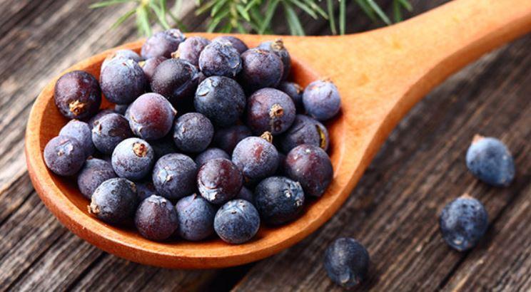 Juniper Berriess